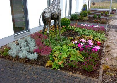 Garten-Neuanlage